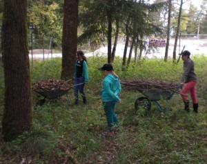 Foto Tierschutzjugend - Igelbau